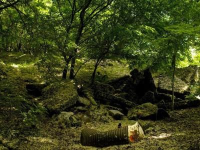 14. Sous-bois, ombre, mousse, asphalte, métal, beauté Un chaos de bitume dans de l'argile importée    On dirait que le périph a dû passer par là…