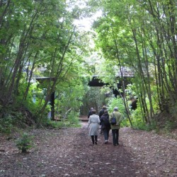 Dans le 16e arrondissement : plus de rails ! Cliché Françoise Mourot
