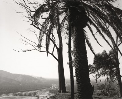 Robert Adams, Au bord de San Timoteo Canyon, Redlands, Californie, 1978 (Fraenkel Gallery, San Francisco et Matthew Marks Gallery, New York)