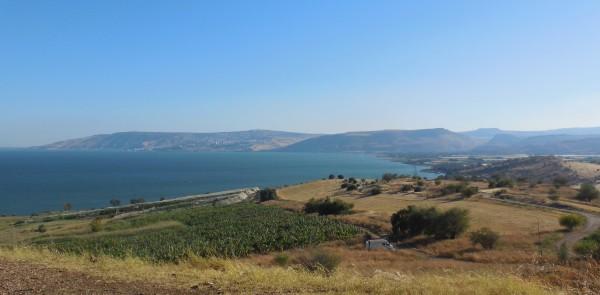 Le lac de Tibériade (photo de l'auteur)
