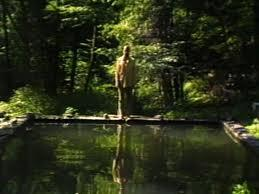 The Reflecting pool, 1977-79 [Le bassin miroir.] Performeur Bill Viola Studio Bill Viola