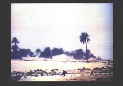 Chott El-Djerid (A Portrait in Light and Heat), 1979 [Portrait dans la lumière et la chaleur]