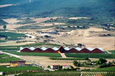 La bodega Ysios, dessinée par l'architecte Santiago Calatrava. Vignoble de la Rioja (Espagne). R. Schirmer, 2006
