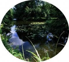 Les « eaux étroites » de l'Evre