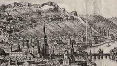 Fig.6. Détail du coteau viticole de St Léonard à l'aval de Liège
