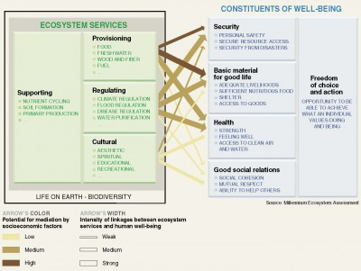 Figure 1Schéma conceptuel des services écosystémiques, tel qu'il a été formalisé par le Millenium Ecological assessment (2005)