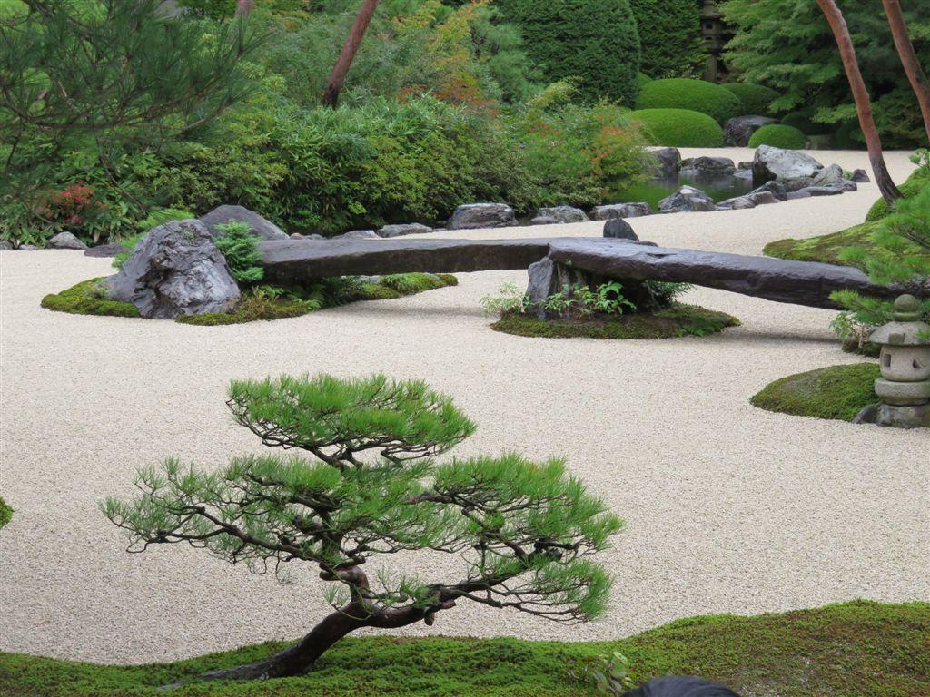 Les caf s g o japon l art des jardins contempler et - Jardin japonais mousse ...