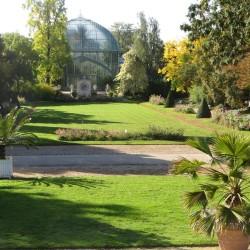 Serres d'Auteuil : jardin à la française. Cliché Françoise Mourot