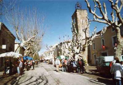 Richerenches, le plus gros marché aux truffes en France Photo : Vincent Marcilhac