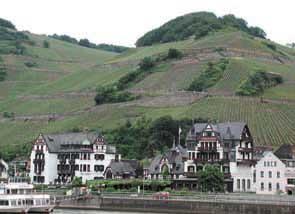 Weinberg, dans la vallée du Rhin Source : www.rheintal-ultra.de